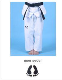 Moa Seogi