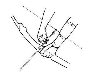 Nocking atau Memasang Ekor Panah