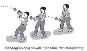 Teknik Menangkap Bola Kasti